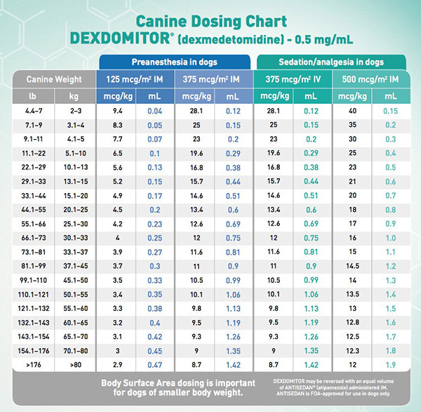 Iv Fluid Rate Chart For Dogs Lasix For Dogs Veterinary